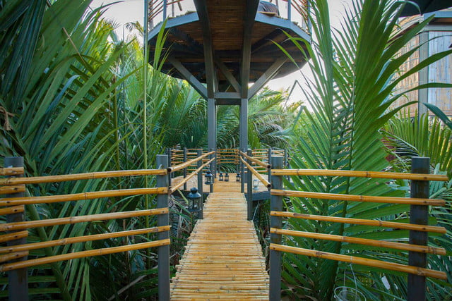 the bangkok tree house hotel lets guests sleep under stars resort 3