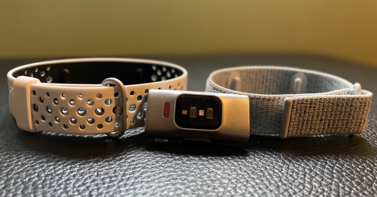 Amazon Halo review: Affordable but questionable fitness band