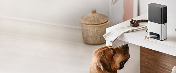 Robotic litter boxes, doggy DNA tests, and beyond: The best tech for pets