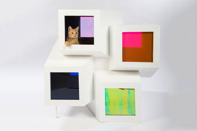 architects for animals design amazing cat houses perkinswill photo credit meghan bob photography