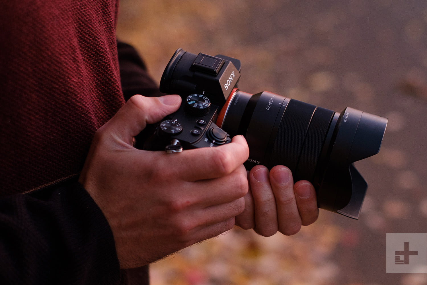 The Best Mirrorless Cameras for 2019 | Digital Trends