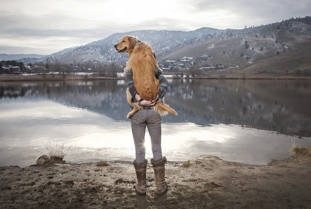 2017 photography trends woman holding her golden retriever at lake