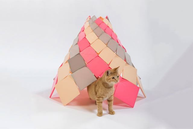 architects for animals design amazing cat houses dsh architecture  photo credit meghan bob photography