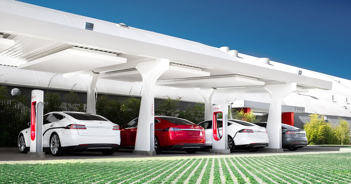 Elon Musk will 'take action' against inconsiderate Tesla ...