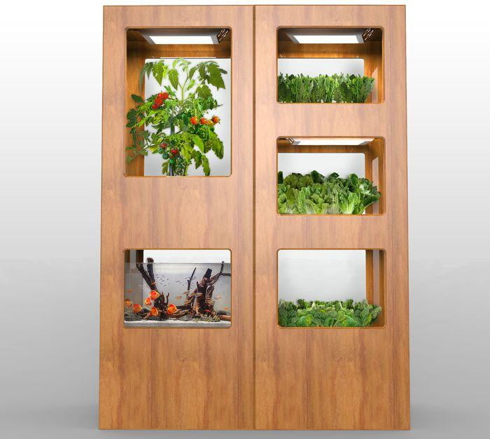 Hydroponics go beyond weed for these indoor home gardens for Indoor gardening trends