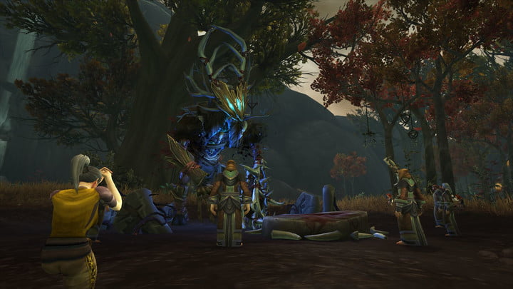 world of warcraft allied races guide kul tiran druid