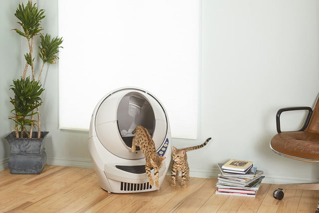 robots that do chores litter robot  automatic self cleaning box