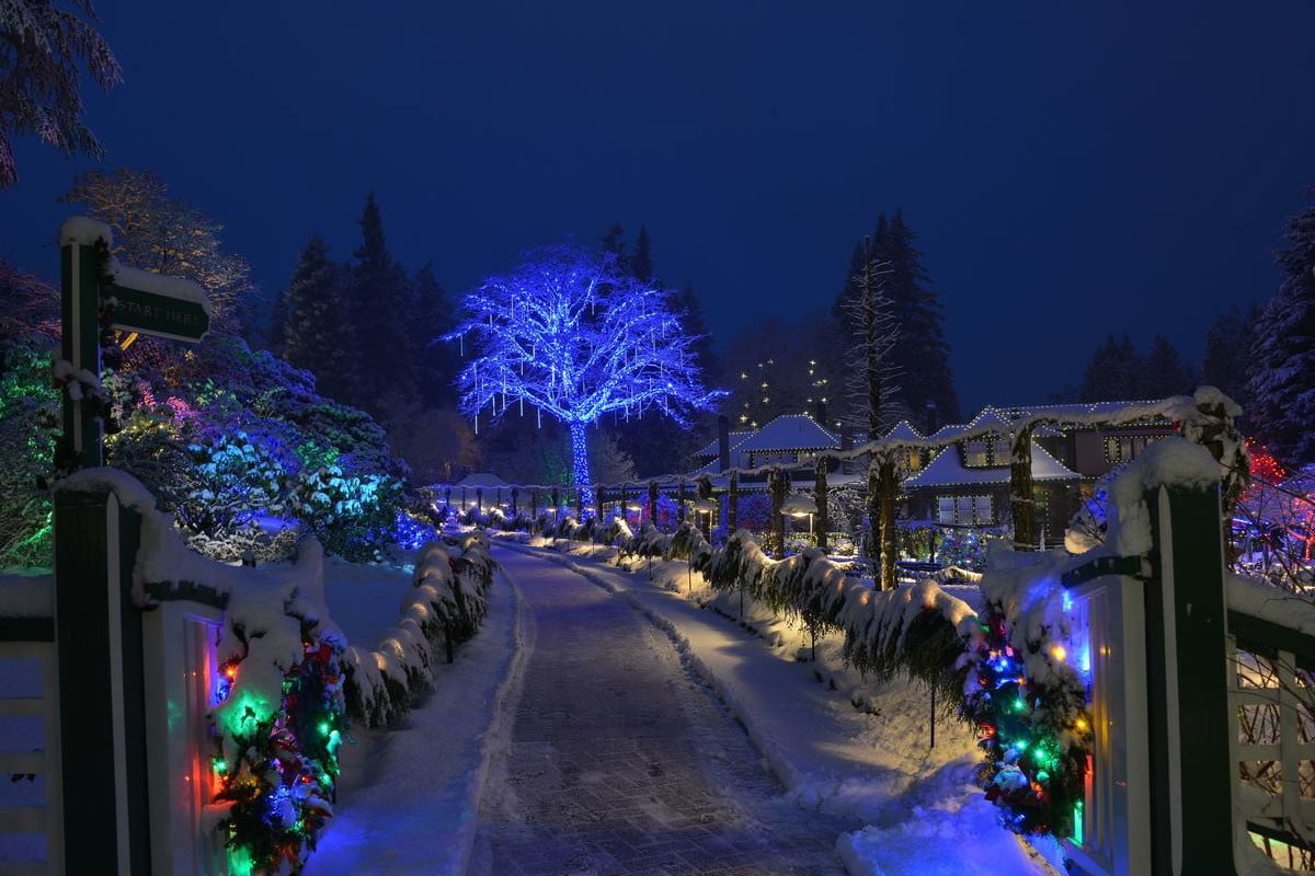 The 10 Best Christmas Light Displays | Digital Trends
