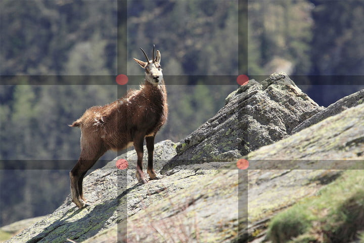what is the rule of thirds example3