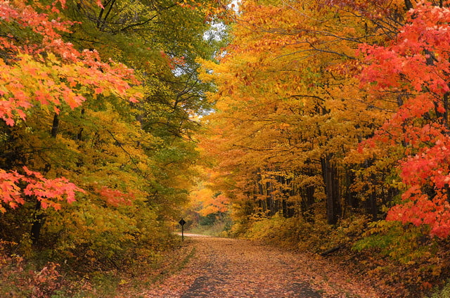 2016 best state for fall photography sherry johnston michigan
