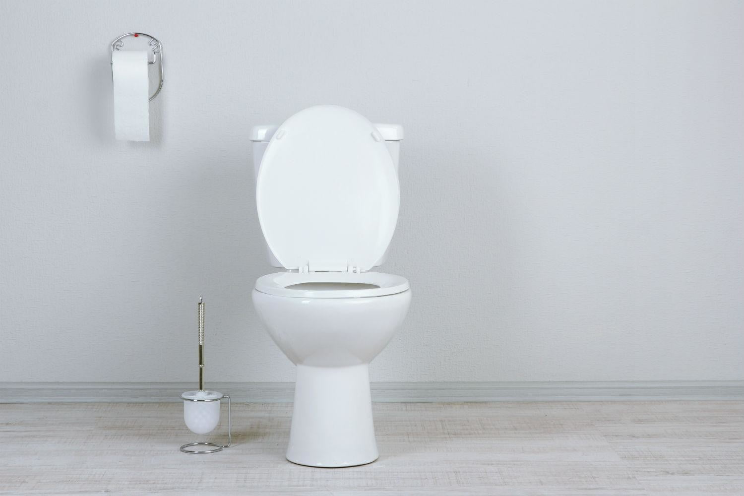 How to Unclog a Toilet | Digital Trends