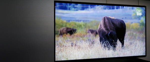 Resistance is futile. Sony's spellbinding Z9G will make you fall in love with 8K