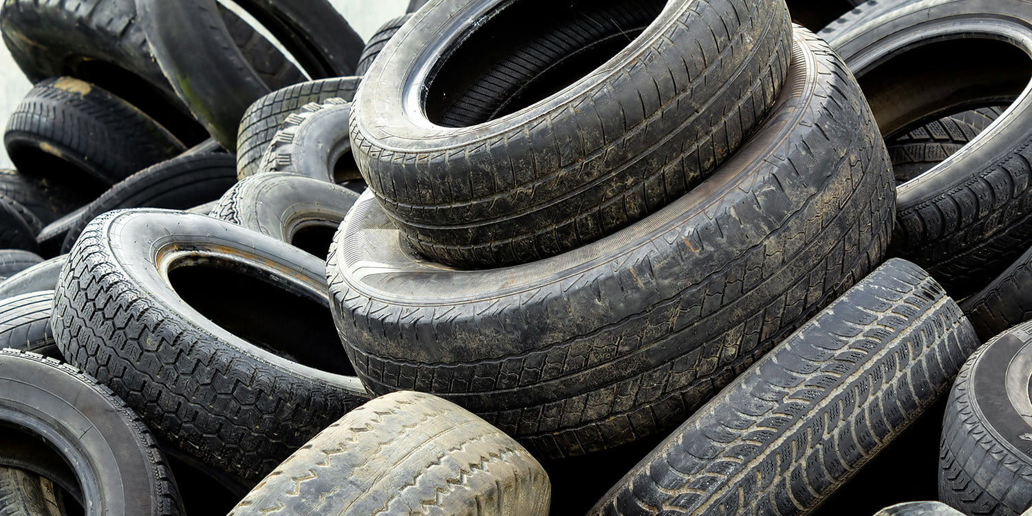 how to fashion a mosquito trap out of an old tire digital trends