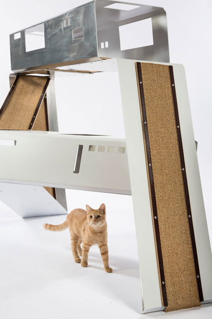 architects for animals design amazing cat houses word schmidt photo credit meghan bob photography